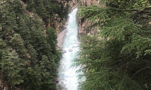 Dharali