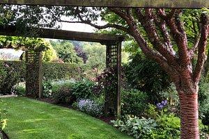 Meadow Farm Garden  - Arbour with Prunus serrulata