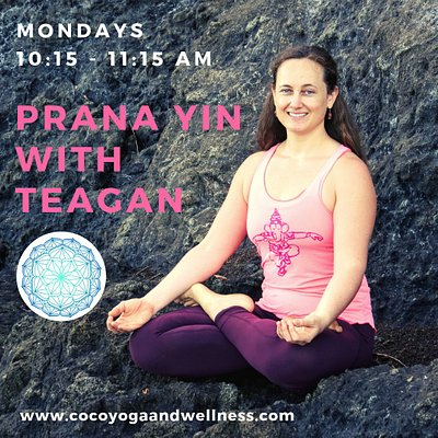 This yin yoga class invites us to take our time, moving with care and intention, and to explore the depths and reaches of our postures as we breathe into each pose for one to three minutes.  In Sanskrit, Prana denotes our primary energy — our breath, vital force, and consciousness.  In taking care to maintain full breath cycles, and in applying dynamic breath rhythms, we invite holding patterns within the body to release.