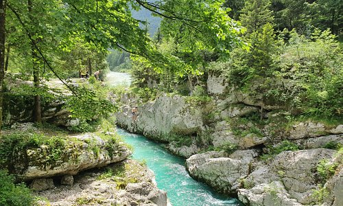activities in the river