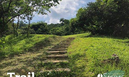 3 Springs Mountain Park - Trail