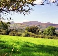 Yoga Walks Ireland on the foot of the Galty Mountains...you have to book one of these 90 min walks.