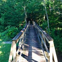Footbridge over Abita River