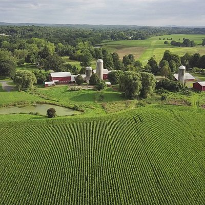 Greig Farm has proudly grown quality produce for the Hudson Valley since 1942.