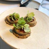 Andelever shiso ( japansk mynte ) Duckliver shiso ( beafsteakplant)