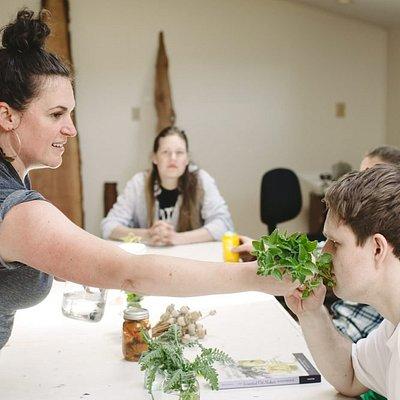 Plant Based healing workshop