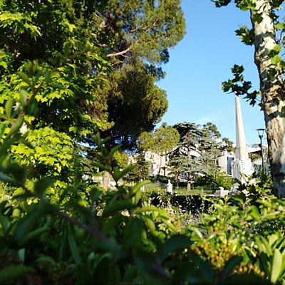 Monumento ai Caduti tra gli alberi