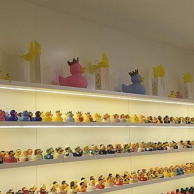 Parte da loja, onde se pode ver parte dos patos que lá existem