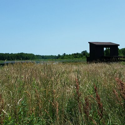 Wildlife blind at Smokey Hollow Road, Lysander, NY overlooking Greene Pond and meadows