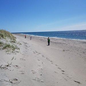 Kyststien er flott. Kan variere om en går på sti bak klitten eller på stranden. Bildene er tatt fra østhasselstranda mot Kviljo.