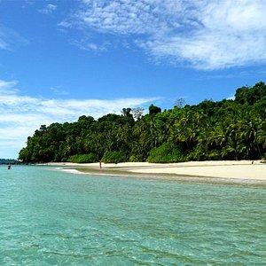 Hermosas islas remotas donde la vegetación toca el mar!!