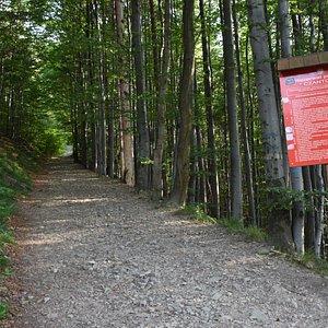 Rezerwat przyrody Czantoria