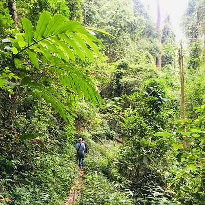 #2nd Doi Suthep Nature Trail to Mon Tha Than Waterfall 🏃💦  Special trip and coming soon...🔥🔥🔥🔥🔥  Contact us: 📧n_o_k_f_l_y@hotmail.com 📱Line ID wendytour1234