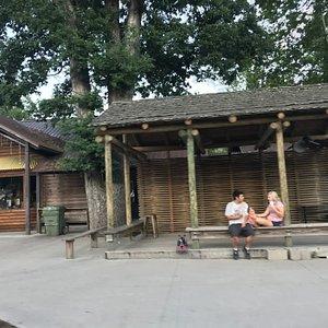 Owl Cage Dance Pavilion