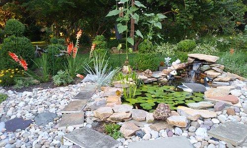 Pond area of yard.