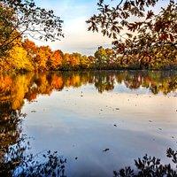 I took this last fall at the north lake.