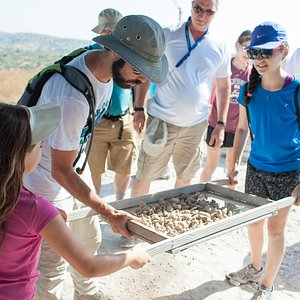 Learning the tricks of the archaeological trade