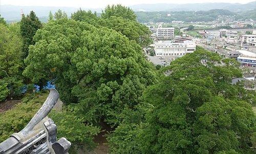 杵築城天守閣からの眺め-3