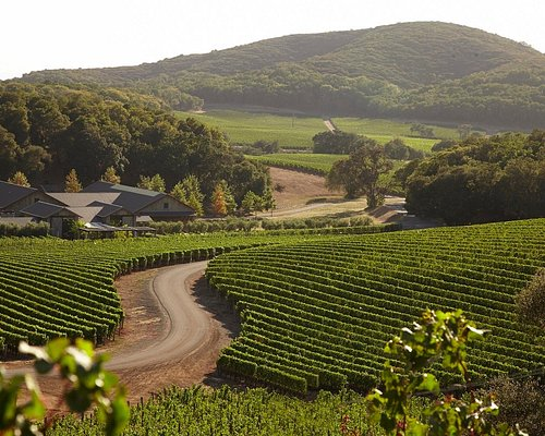 Tasting room hosts tours, tastings and Bouchon-catered lunches, by appointment only.