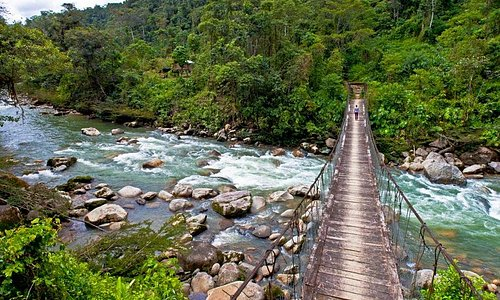 caminando por la selva y rumbo al gran cañon de ñachiyaku...