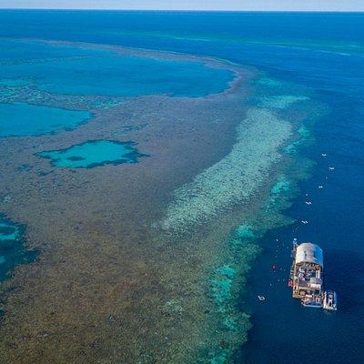 Heart Pontoon, Hardy Reef