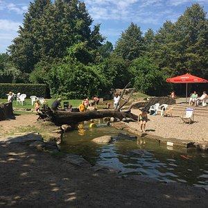 Wundervoller Wasserpark großartig für Kinder 👶