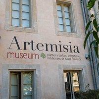 Entrée Artemisia museum