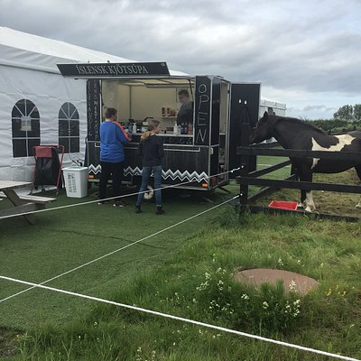 Brá ( the mare ) by the food cart