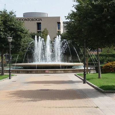 Parque De Los Perdigones