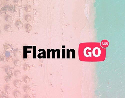 www.flamingo365.com