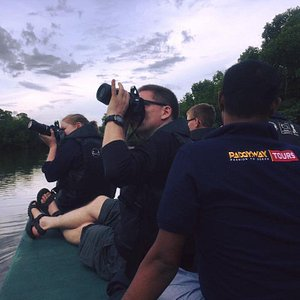 Book us for your peaceful lagoon tour to experience the nature and eco system #ecotour #ECOSYSTEM #LAGOON #MANGROVE #elephants #nature #peace