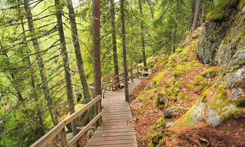 Struve Geodetic Arc: Oravivuori Arc Point (Unesco site), Oravivuori nature trail and triangulation tower. Photo Tero Takalo-Eskola