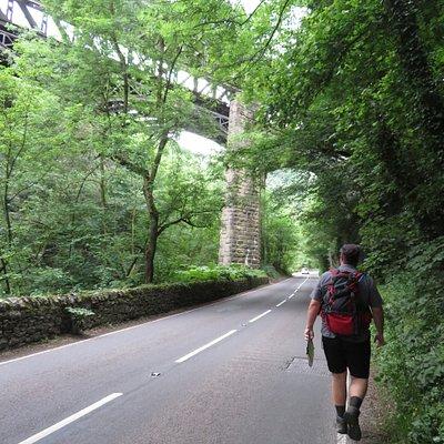Dukes Drive Viaduct