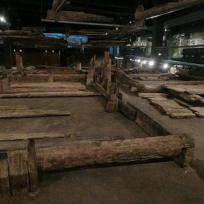 Музей археологии дерева