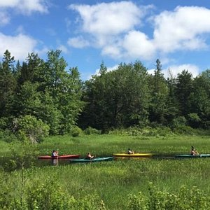 The Activity Shop has made it easy to explore the beautiful waterways of the Blue Hill peninsula and Deer Isle for over 20 years. #theactivityshop