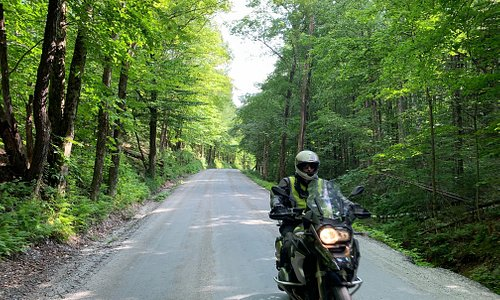 Taking the BMW GS on a dirt road through the woods.