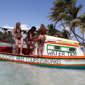 Froggy's Reef Tours and Snorkeling Carriacou