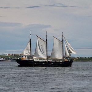 The Tall Ship Silva