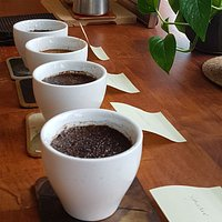 Public Coffee Cupping Session