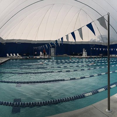 Our pool is covered during the winter months