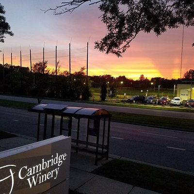 The sunset over the Cambridge Winery sign at our Madison location.