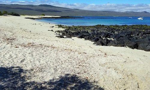 Beach visit at Playa Manglecito before Kicker Rock tour.