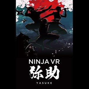 image of the ninja VR