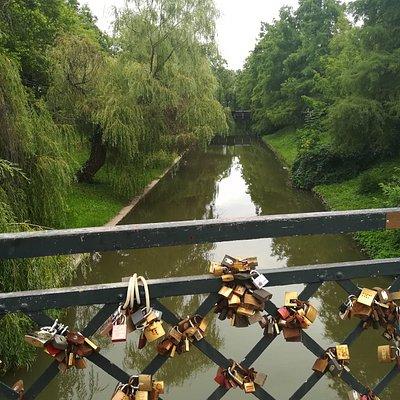 Élővíz-csatorna
