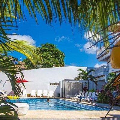 PASADIA ARIA HOTEL.  Disfruta de un almuerzo caribeño en la tranquilidad de las playas de Manzanillo, con piscina, camas asoleadoras, una limonada fresca en compañía de tu familia. Fotografías  @AriaHotel . Reservas📲 📞🍀Cel./WhatsApp: (+57 )3022921783-3156000441