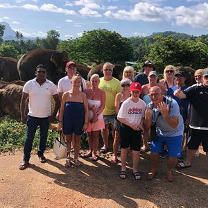 The Best tour in Pinnawala with elephants