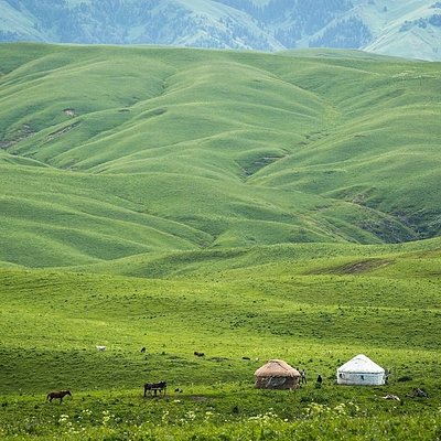 Dzhungar Alatau, Almaty region, June 2019