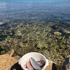 Fishing and authentic Croatian cooking in Preko with Anamarija