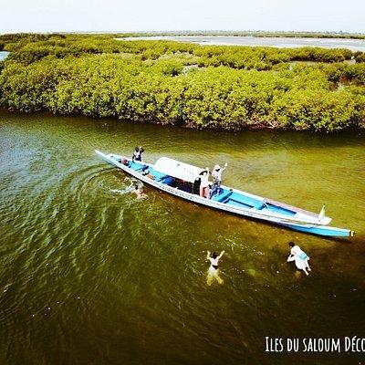 Balade en pirogue dans les Îles du saloum Sénégal avec notre équipe