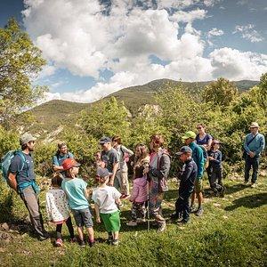 """Se acerca el mes de Agosto y nosotros te proponemos conocer el Pirineo desde la sencillez  del senderismo """"acompañado"""". Contar, acercar y así conocer detalles que sino nos pasarían desapercibidos. Os dejamos algunas propuestas de actividades en nuestra web:  http://ojospirenaicos.es/agosto-familia-pirineo-aragones/  #enfamilia #jaca #senderismo #pirineos #pirineo #guiasdemontaña #educacionambiental"""